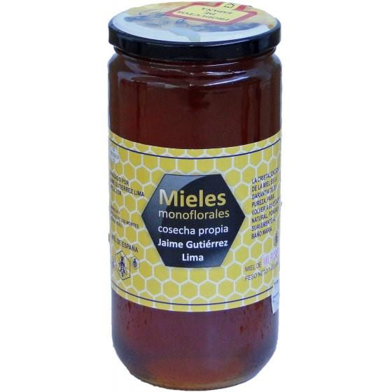 Miel de Mil Flores 1Kg. (Cosecha Propia JG)